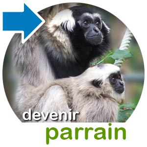 parrainer un animal au zoo d'asson